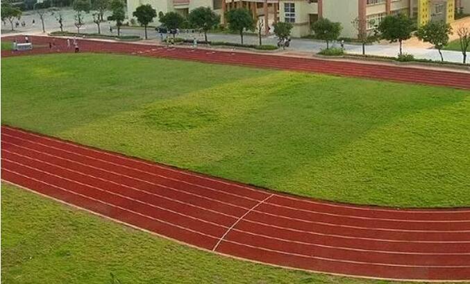 塑胶跑道和橡胶跑道究竟有何不同?